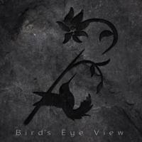 Bird Eyes View