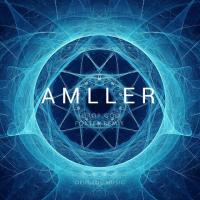 AMLLeR
