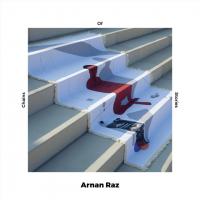 Arnan Raz