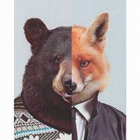Bombata & The Fox