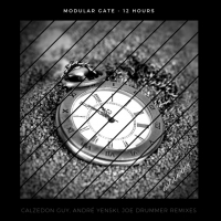 Modular Gate