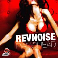Revnoise